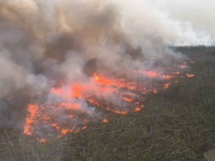 Ignition Fires have been set to hamper the growth of the fire near Pikangikum