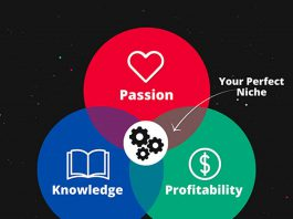 Finding your niche