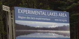 Experimental Lakes Area near Kenora Ontario