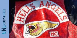 Project Skylark Hells Angelsa