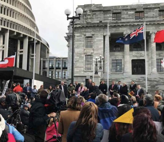 Ministers address hundreds of Maori protesters gathered to demonstrate against what protesters say is the disproportionate number of Maori children taken by social service agencies from their families, outside parliament in Wellington, New Zealand, July 30, 2019. REUTERS/Praveen Menon