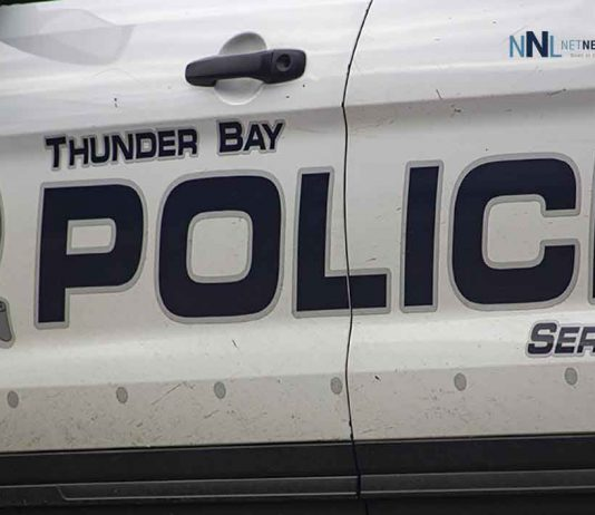 Charges laid following fight at Landmark Inn