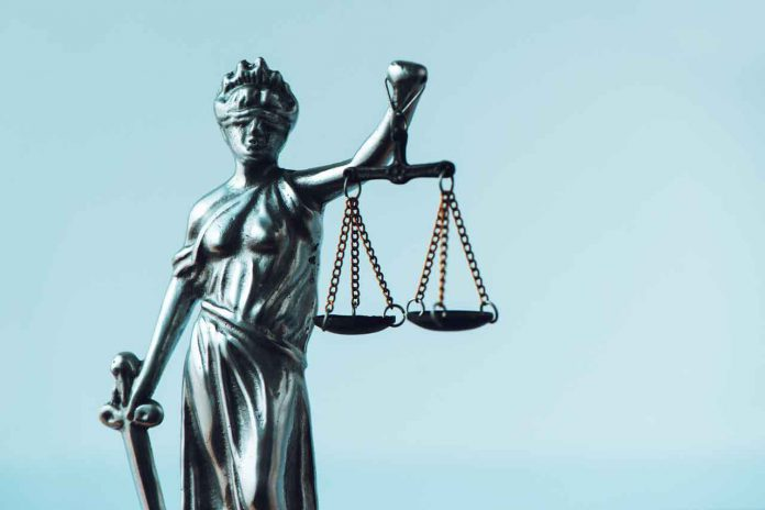 Roles of Professional Criminal Lawyer