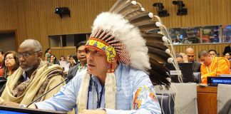 AFN National Chief at UN - Image AFN