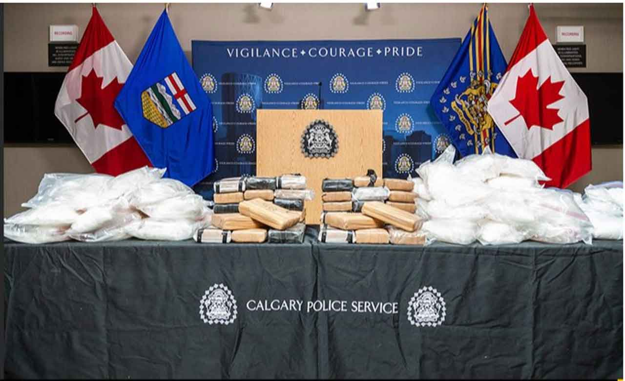 Nearly $10 Million in Drugs Seized