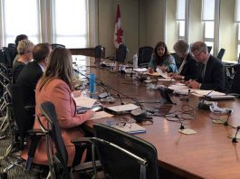 Canada's Minister of Health Chairs meeting on corona virus
