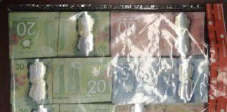 Image Thunder Bay Police Service - Drug arrest at Midtown Inn