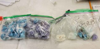 Drugs Seized in Raid on Van Norman Street home - Image TBPS