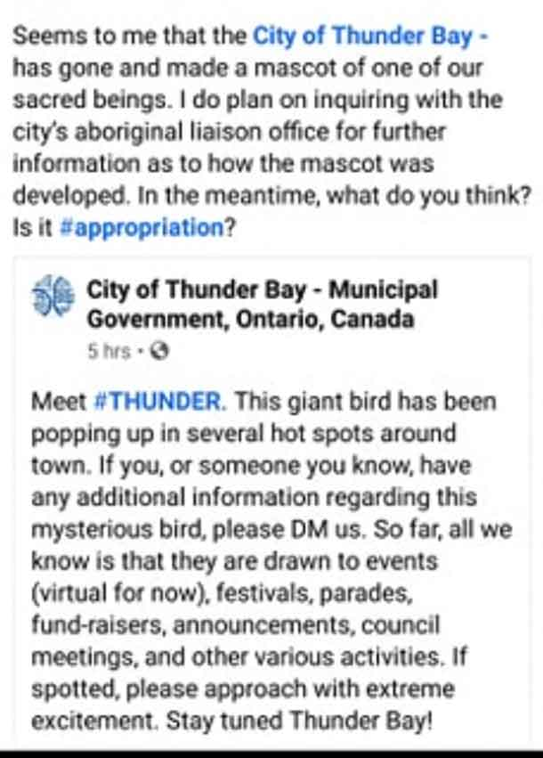 Comments on Social Media regarding the City of Thunder Bay's decision on a mascot were swift and mainly negative.