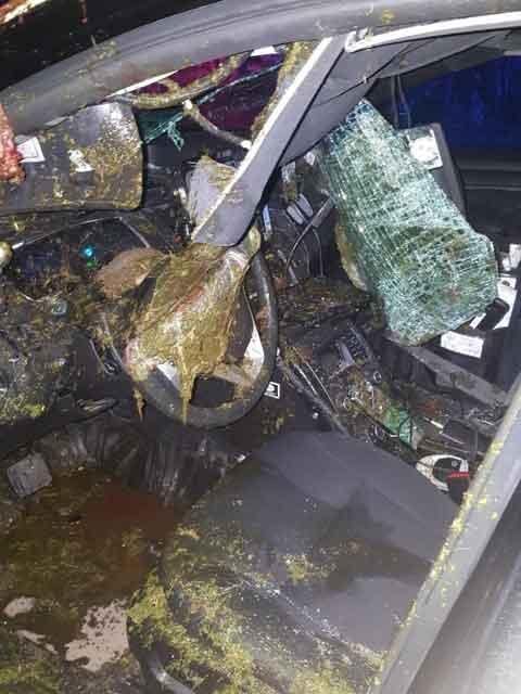 Image: OPP - Interior of OPP Cruiser