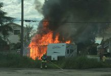 Firefighters put out the blaze on Alberta Street - Image TBFR