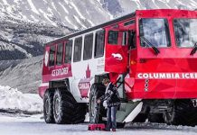 Pursuit Bus - Columbia Icefields