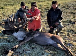 A Caribou Harvested to feed a family - Image Warrant Office Ron Wen, Canadian Rangers.