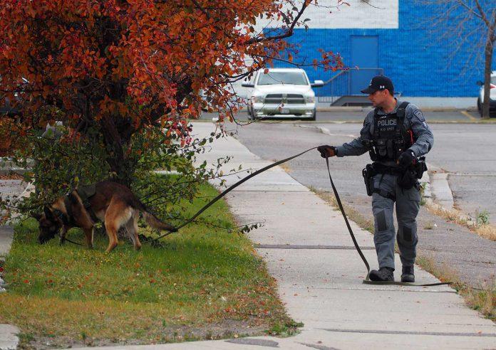 Thunder Bay Police Service K-9 Unit on scene