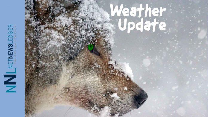 Winter Weather Update Splash