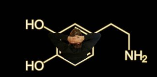 Dopamine's Role in Addiction
