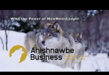 Anishnawbe Business