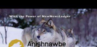 Anishnawbe Business