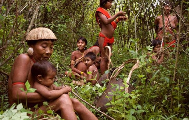 Davi Kopenawa's book is an impassioned plea to respect the Yanomami's rights and preserve the Amazon rainforest. © Fiona Watson/Survival