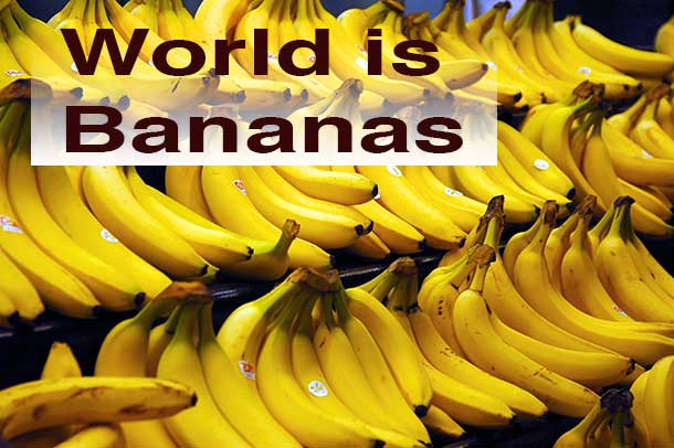 The world was not always this bananas.