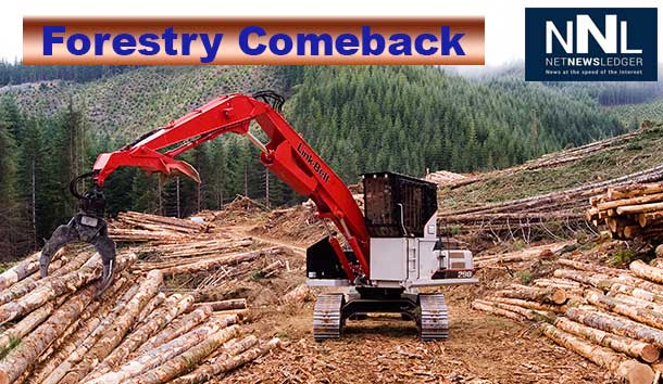 Free Trade Deal with Europe Helps Forest Sector