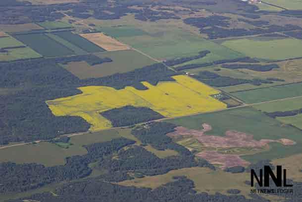 Farm Fields in Manitoba