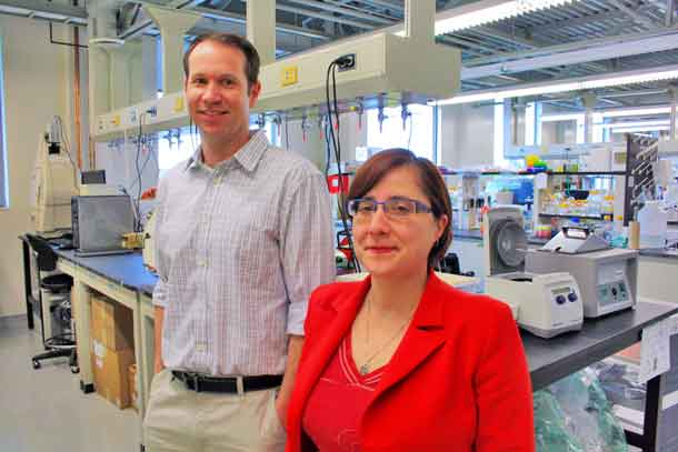 Dr. Simon Lees and Health Research Institute scientist Dr. Laura Curiel in the NOSM lab at Lakehead University. A multi-institution research collaboration in Thunder Bay is looking at new ways of boosting cancer treatment effectiveness