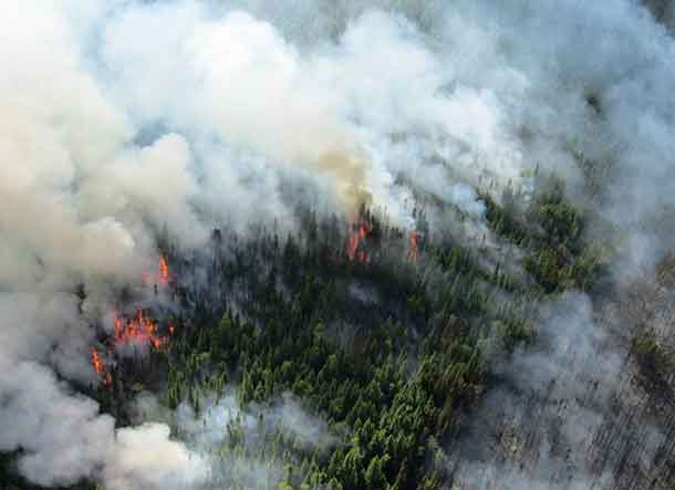 The Aviation, Forest Fire and Emergency Services program in the Northwest Region is dealing with multiple lightning and human-caused fires daily. Fire management personnel are working to assess each fire, take action with ground and air attack as needed and if in a remote location and beneficial to the forest the fire will be monitored.