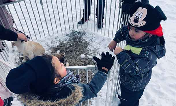 Nation and Darius were all high-fives over the Alaskan Huskies.