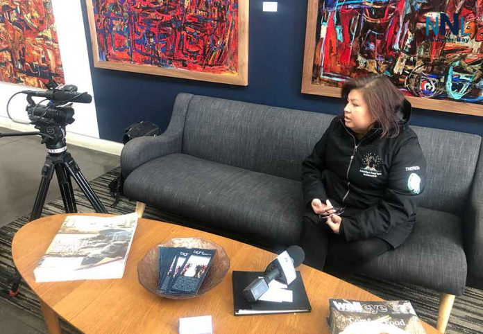 Animbiigoo Zaagi'igan First Nation Chief Theresa Nelson