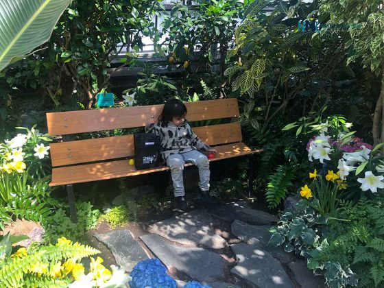 Centennial Botanical Conservatory are magical! Now open for extended winter hours. Mon & Tue 10am-4pm Wed to Fri 10am-8pm Sat & Sun 12-8pm COVID protocols apply. Donations welcome at the door.