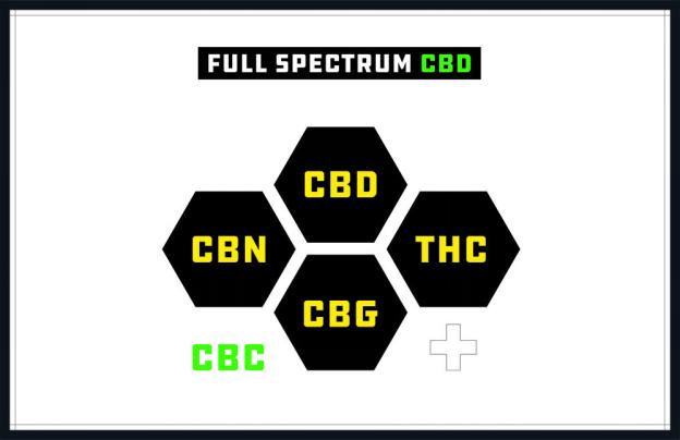 Understanding CBD Spectrum Types
