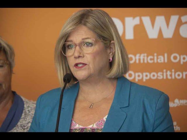 Andrea Horwath NDP Leader