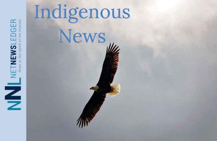 Eagle Flying Indigenous News